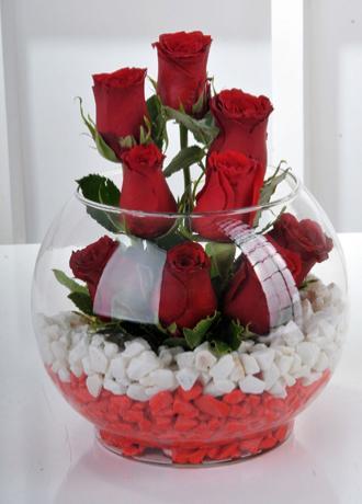 Alanya Çiçek Fanusta 9 Kırmızı Gül