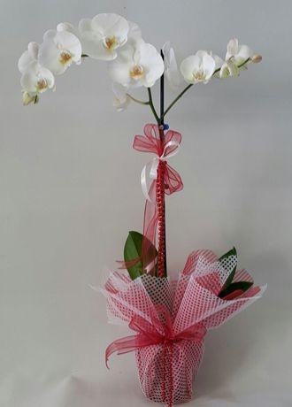 Alanya Çiçek Tekli Beyaz Orkide