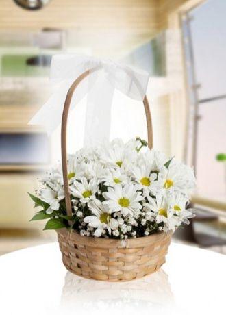 Alanya Çiçek Sepette Papatyalar