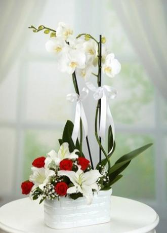 Alanya Çiçek Seramikte Orkide Gül Lilyum