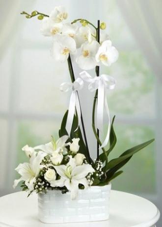 Alanya Çiçek Seramikte Lilyum Orkide Beyaz Gül