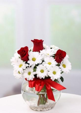 Alanya Çiçek Fanusta Papatya ve Güller