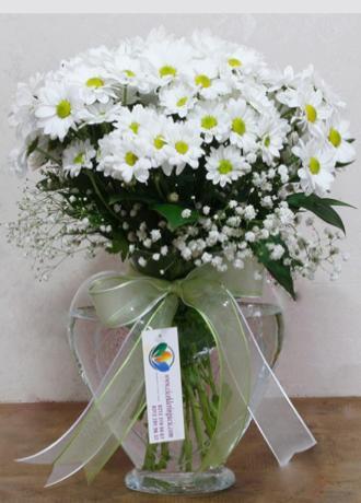 Alanya Çiçek Kalp Vazoda Papatyalar