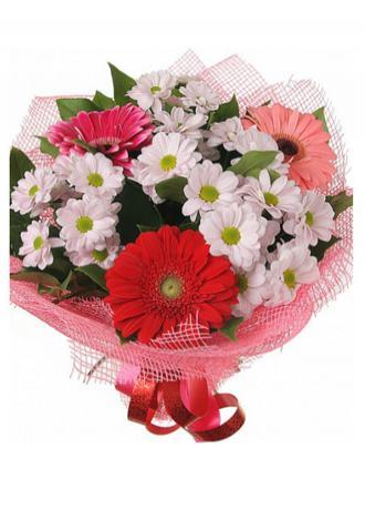 alanya Çiçek Gerbera ve Papatyalar