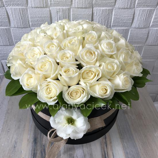 alanya Çiçek Kutuda 51 Beyaz Gül