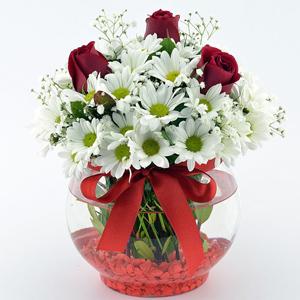 17 kırmızı gülden buket Fanusta Papatya ve Güller